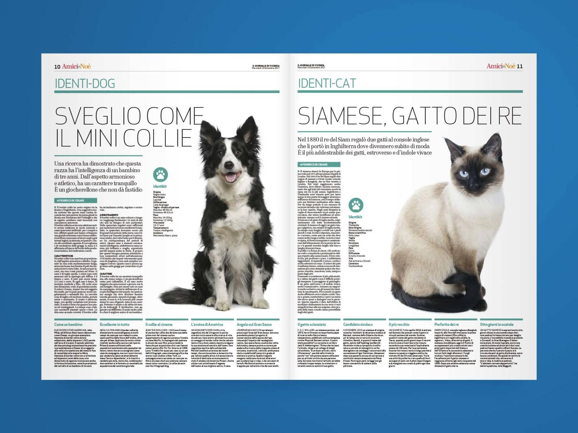 Amici_di_Noè_04_Wenceslau_News_Design