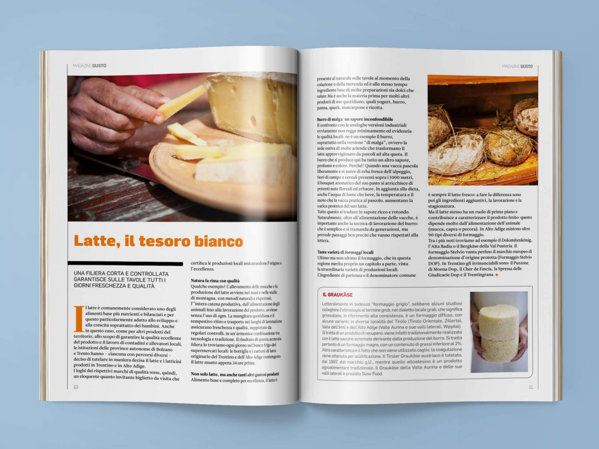 Magazine_05_Wenceslau_News_Design