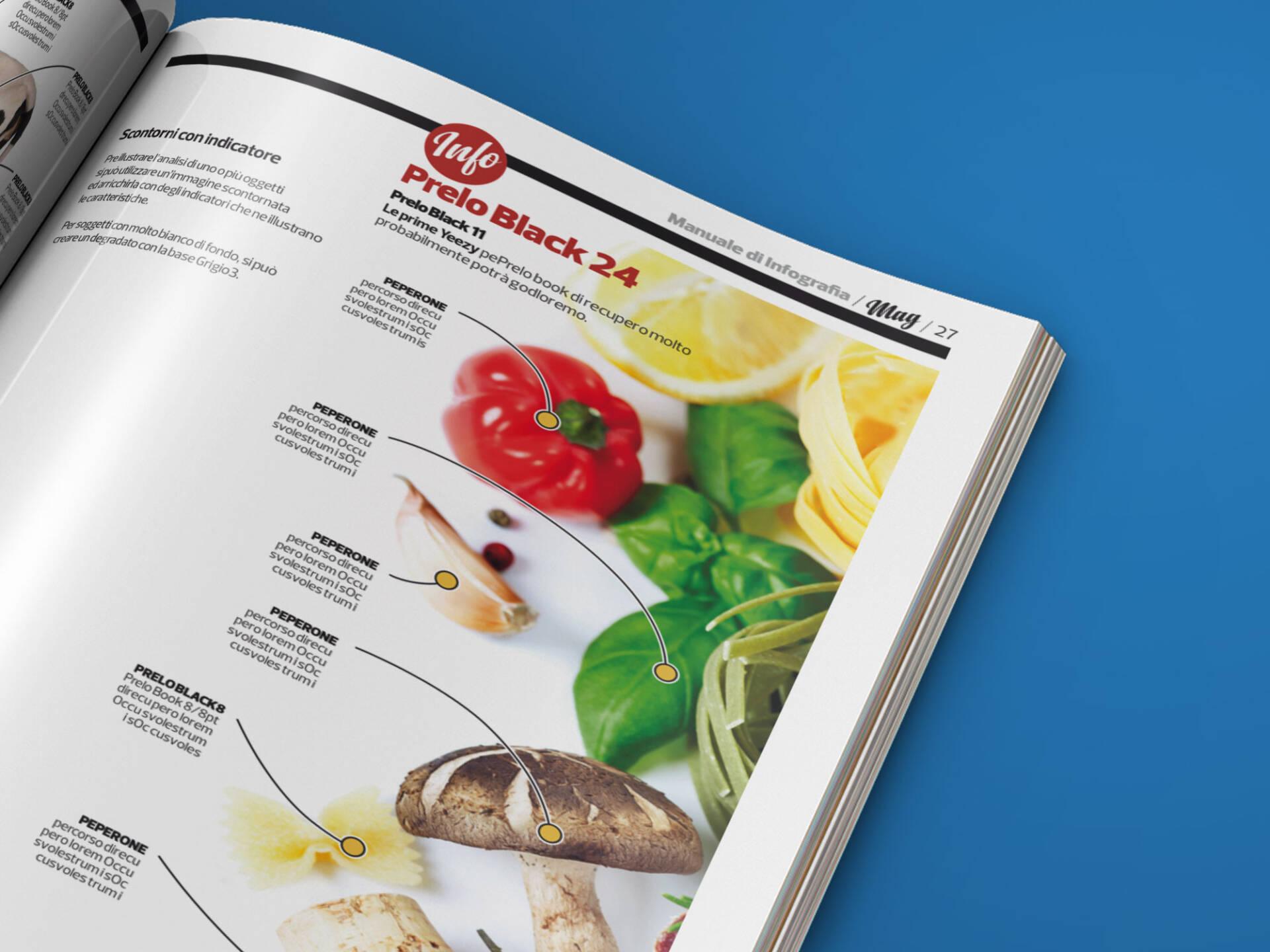 MAG_infographics_01_Wenceslau_News_Design