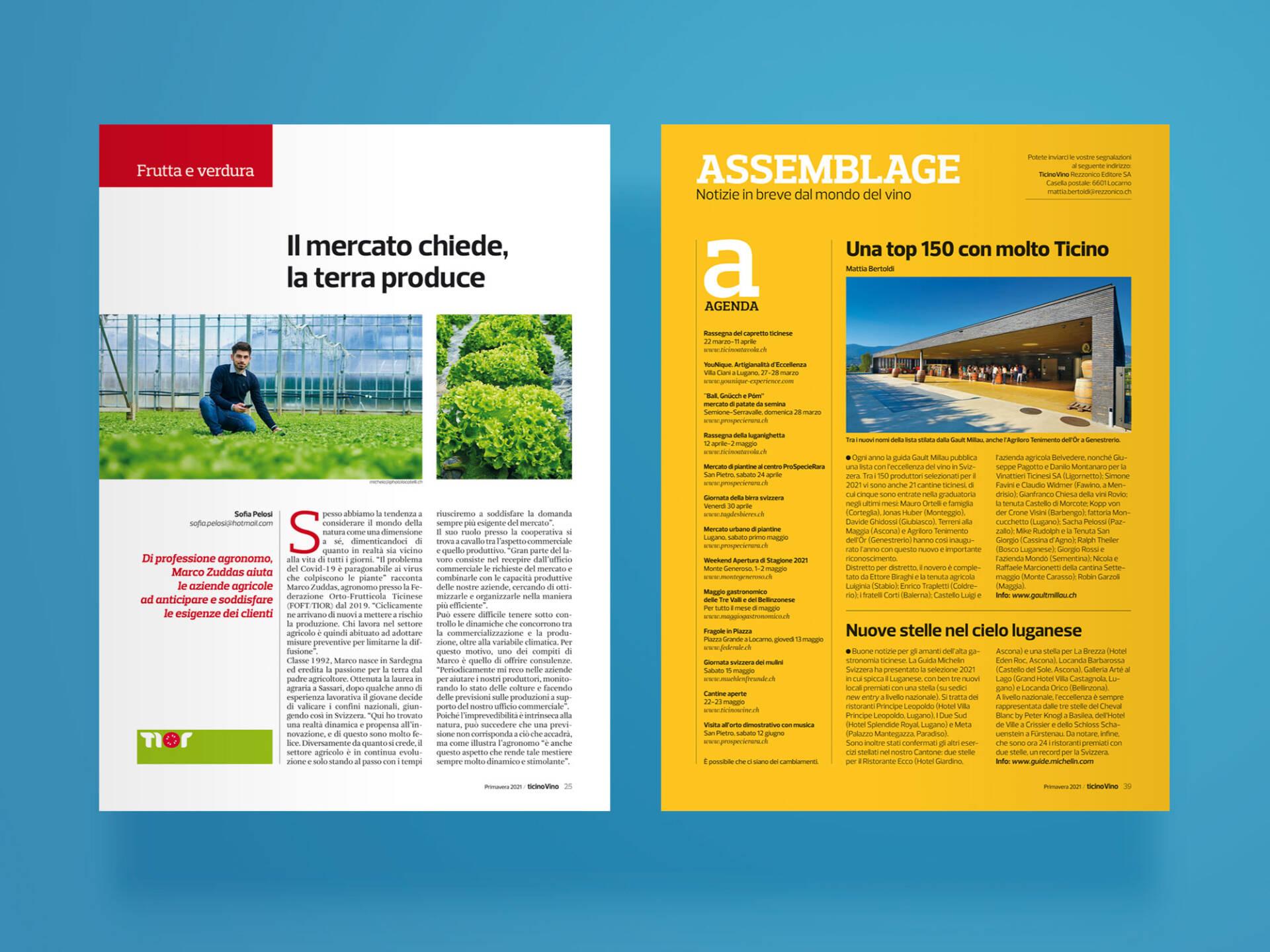 TicinoVino-Wein-Wenceslau-News-Design-06